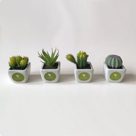 plantje in potje + label